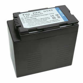 Panasonic CGA-D54S Battery