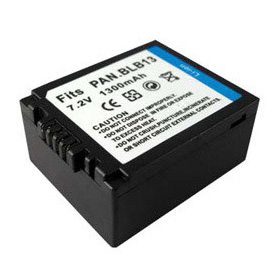 Panasonic Lumix DMC-GF1 Battery
